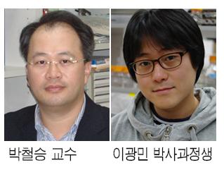 비만 잡는 이기술…한국 과학자들 해냈다
