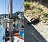 부산 해운대 까마귀 때문에 2천 가구 정전...승강기 갇힌 17명 구조