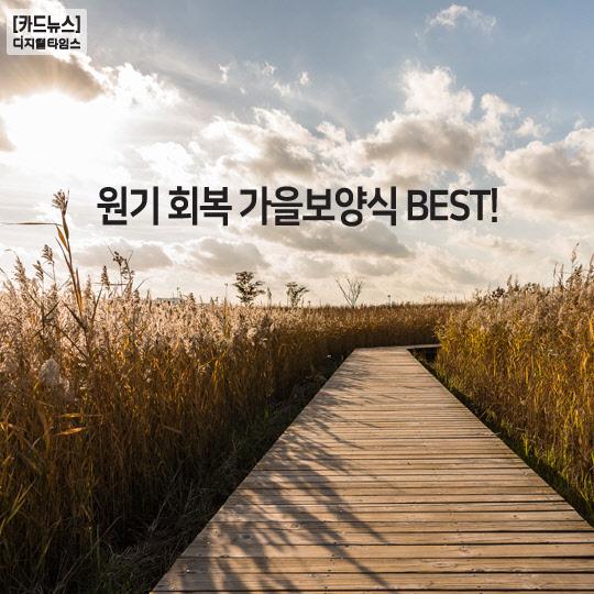 [카드뉴스] 원기 회복 가을보양식 BEST!