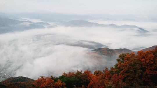 단풍과 운무가 그린 가을 풍경