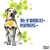 [카드뉴스] 개는 못 들어옵니다~ 안내견이라도~