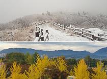 설악산은 이미 겨울...매년 10월이면 눈이 `펑펑`