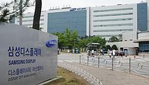 삼성디스플레이, 산업보건의 첫 채용…옴부즈만委 권고 수용