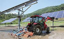 서부발전, `추적식 영농형 태양광` 기술 실증 추진