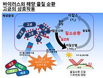 해양 고세균 감염 바이러스 발견…지구 물질순환·기후변화 연구에 기여