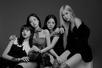 블랙핑크, 日 도쿄 걸즈 컬렉션 무대 오른다…메인 아티스트 참여