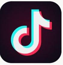 국경 분쟁 인도 틱톡 앱 사용 금지, `틱톡 스타`들 날벼락