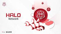 탈중심화 금융시스템디파이 프로젝트 `할로(HALO)` 출범