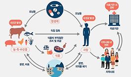 """한국, 영유아 항생제 처방 1위…""""노르웨이의 7.6배"""""""